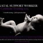 Perinatal Support Worker
