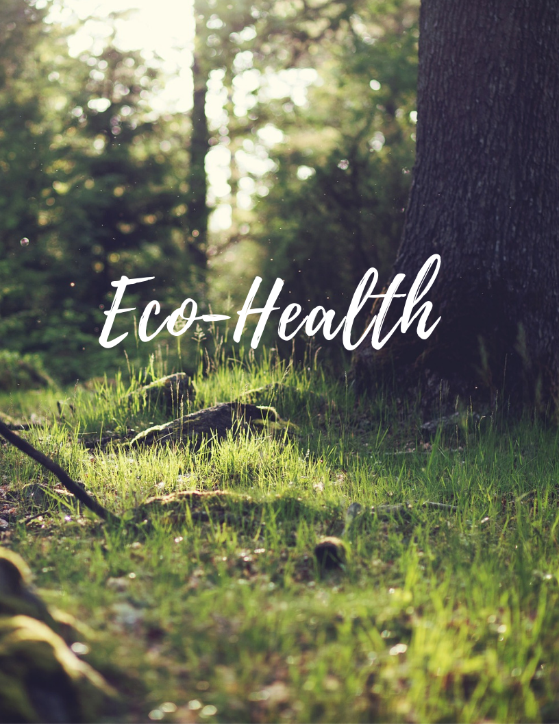 Eco Therapy